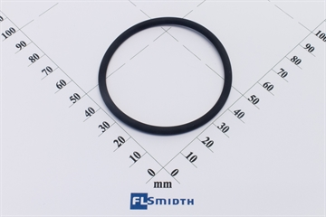 O-ring, viton SP 2000 lid (55)